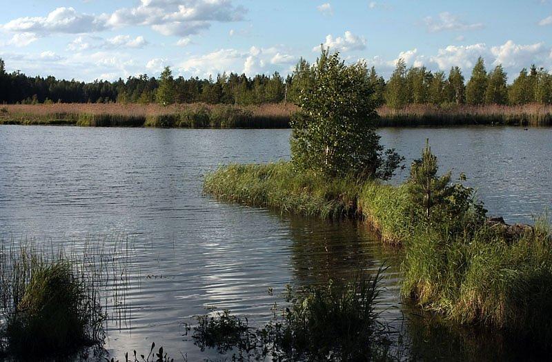 Озеро Таватуй, северо-западный берег