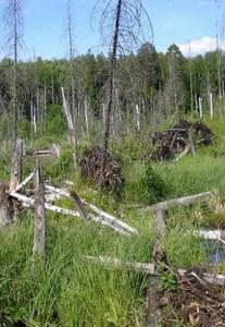 Чертово болото