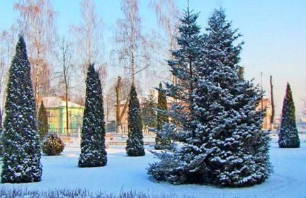 Postavskaya-bolnitsa-15