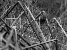 8. Spider by Phlegm, Sheffield - January 2015