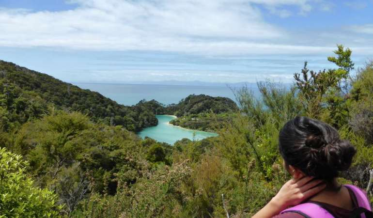 Abel Tasman National Park, New Zealand – seals and scenery