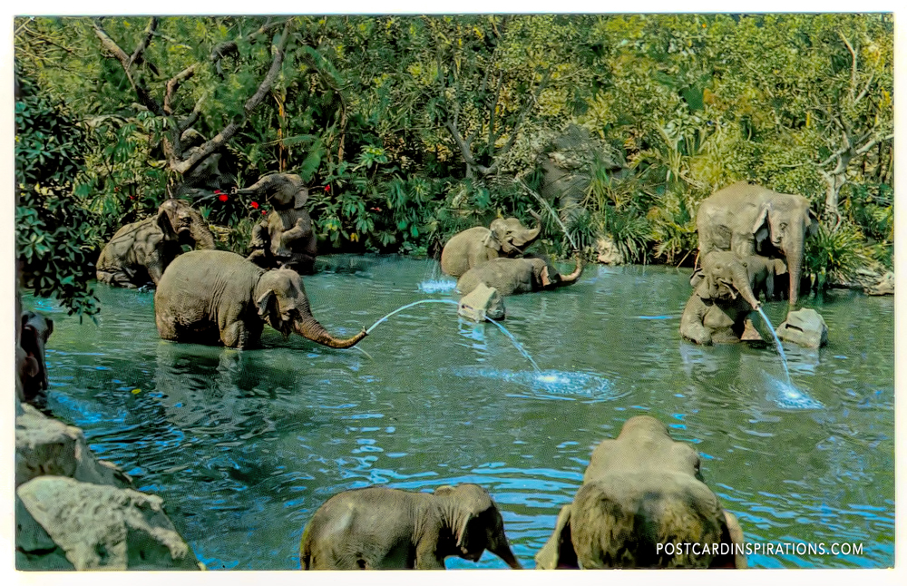 Elephant Bathing Pool in Adventureland (Postcard)... Play for Indian elephants, at home in their own in chanted bathing pool, have a truck full of watery surprises for guests on a cruise down the rivers of adventure Inn Disneyland.