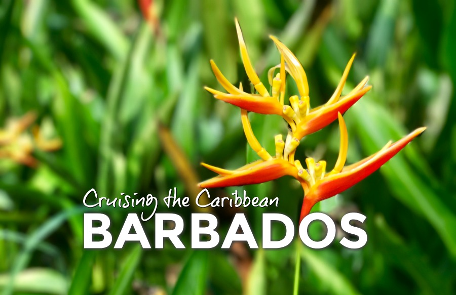 Cruising the Caribbean: Barbados
