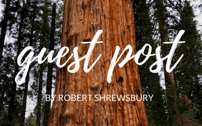 A guest post from Ann's brother about his unplanned stop Sequoia National Park