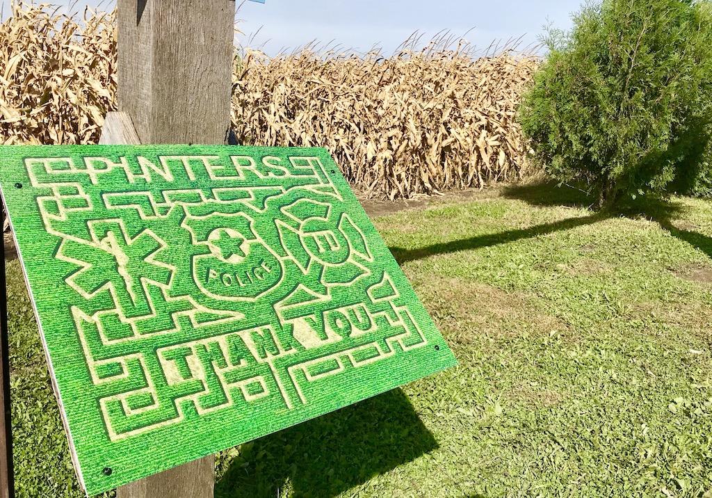 Corn maze at Pinter's Gardens and Pumpkins, Decorah, Iowa