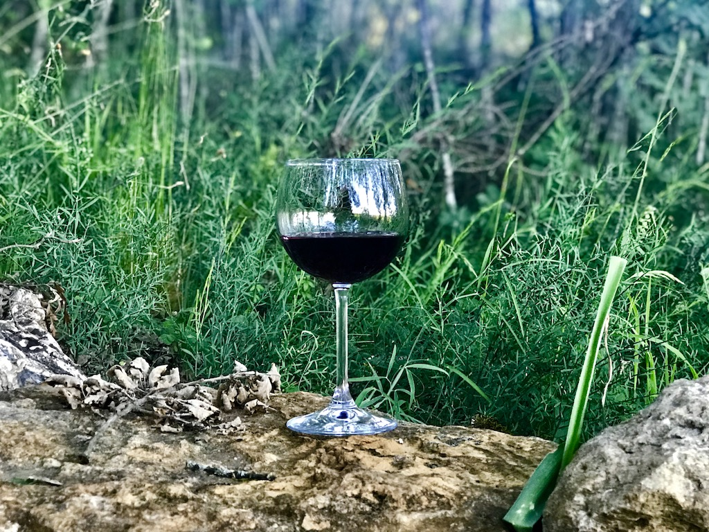 Our wine tasting in the woods experience in Tuscany was one of our favorite travel experiences of all time.