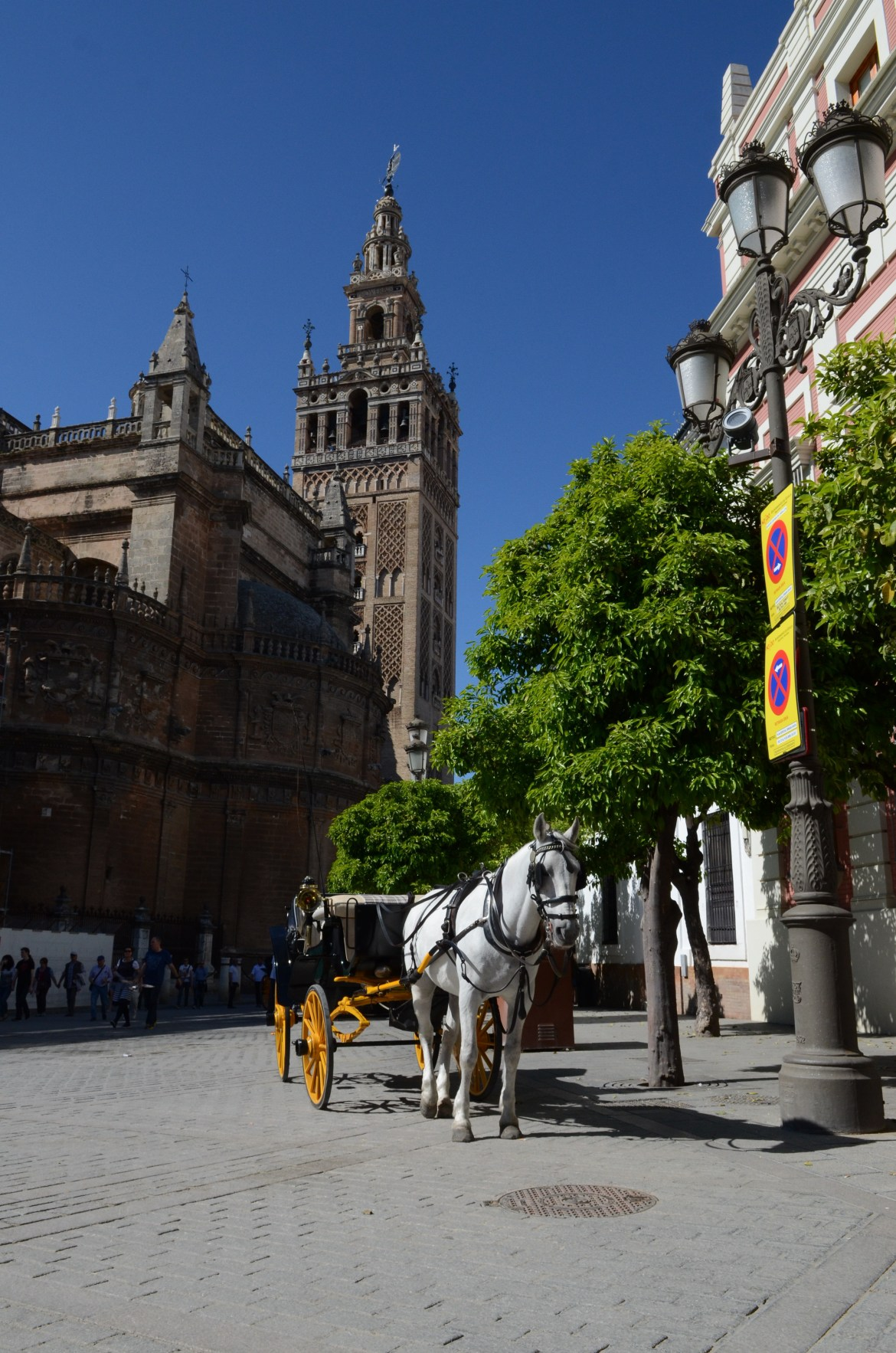 One Week in Andalusia: Seville, Malaga, & Granada