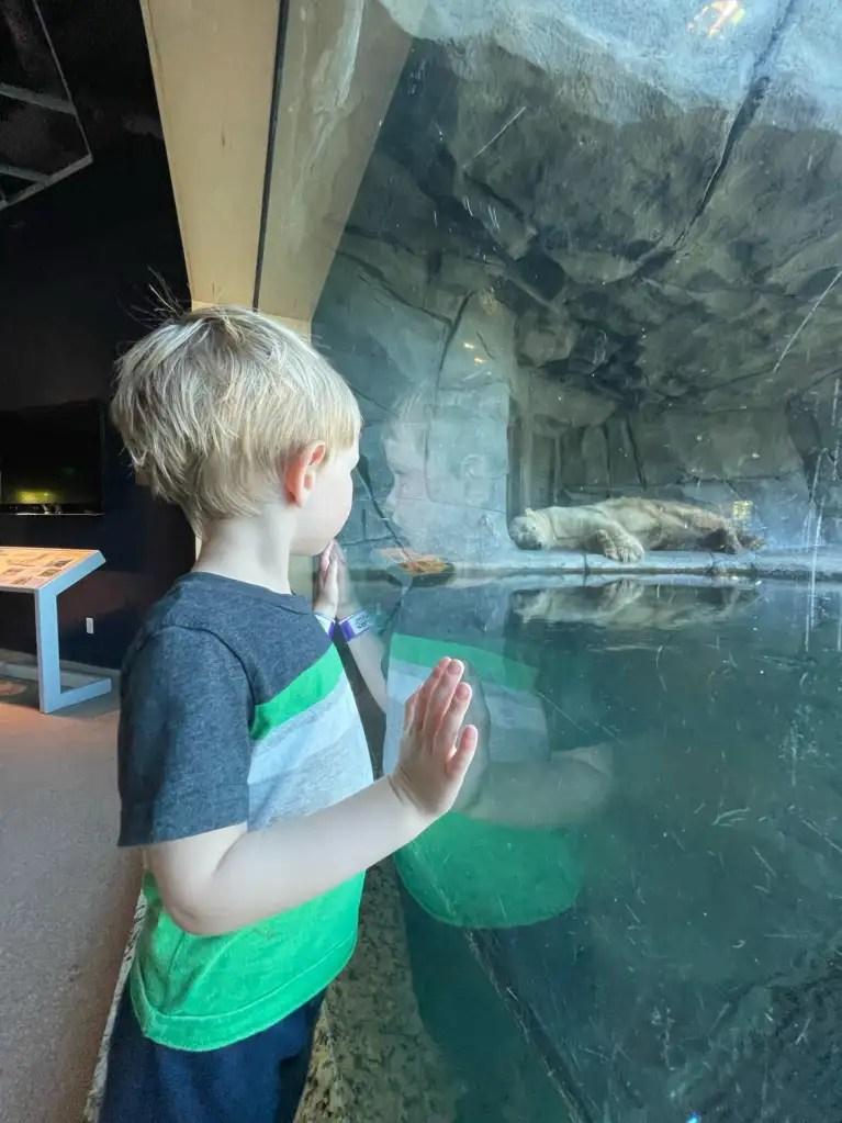 Minnesota Twin Cities with Kids | St. Paul | Minneapolis