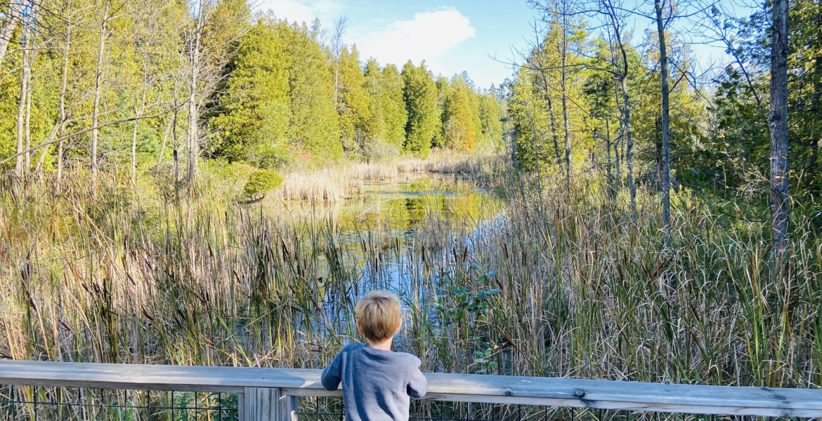 Door County with Kids Families Toddlers   Things to Do in Door County