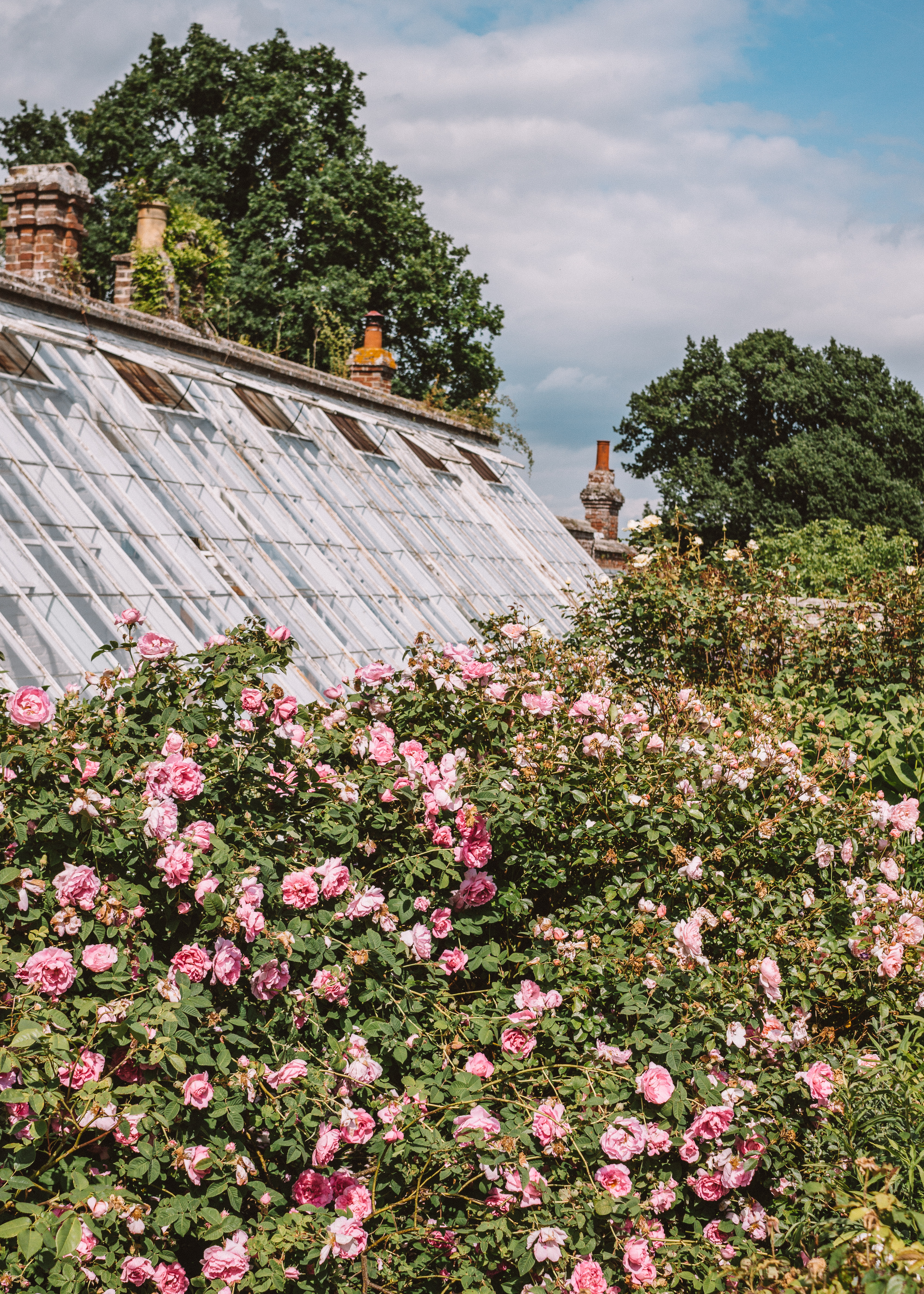 The Walled Garden at Scotney Castle, Kent