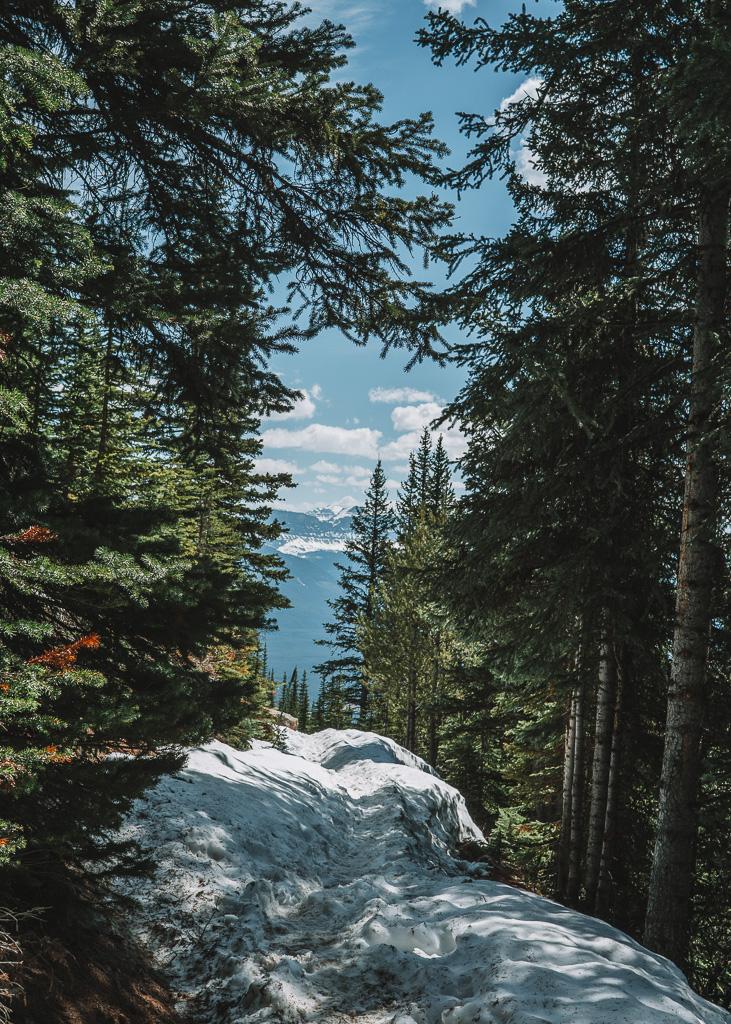 Walking to Lake Agnes, Banff National Park
