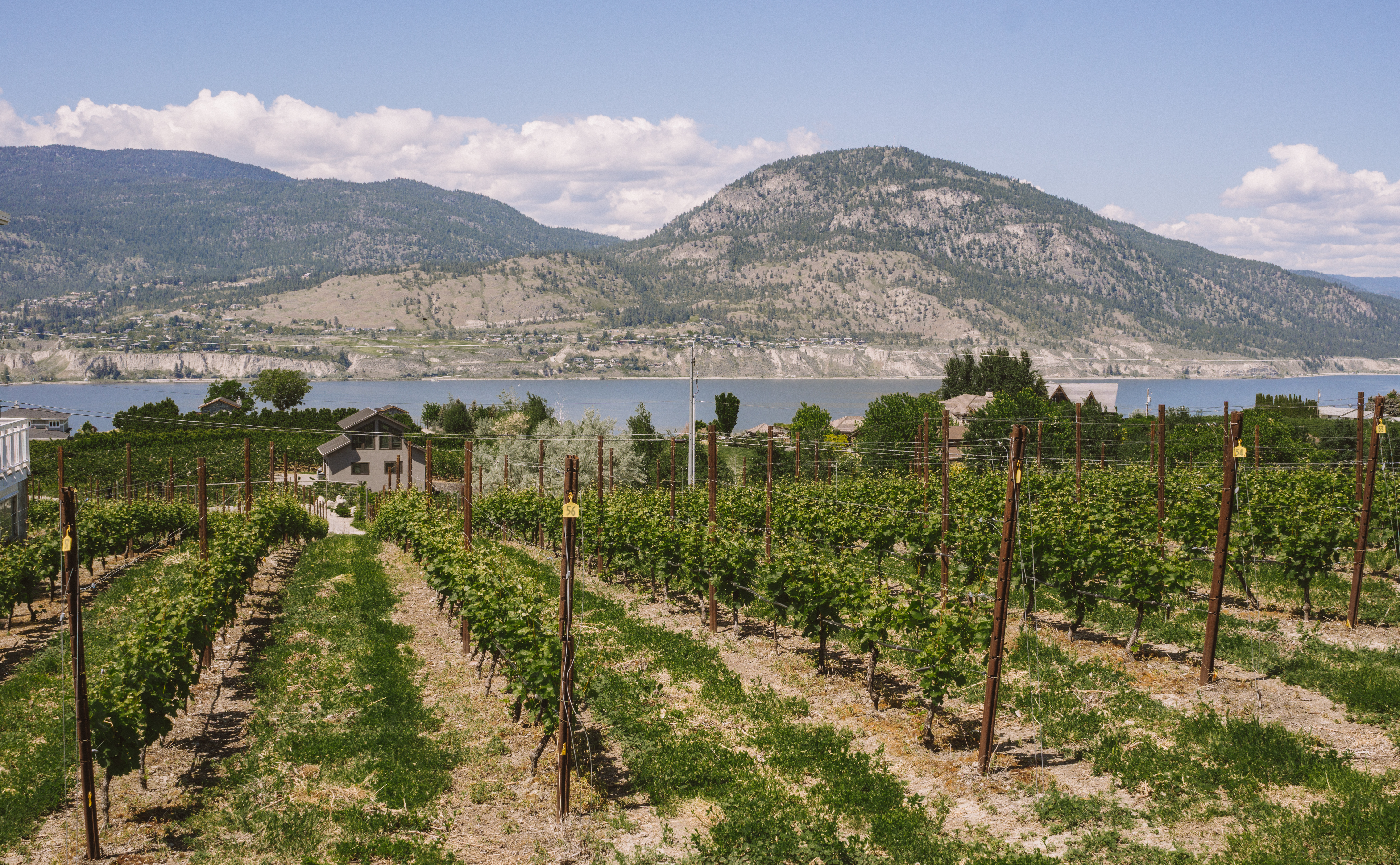 Wineries in the Okanagan Valley, Canada