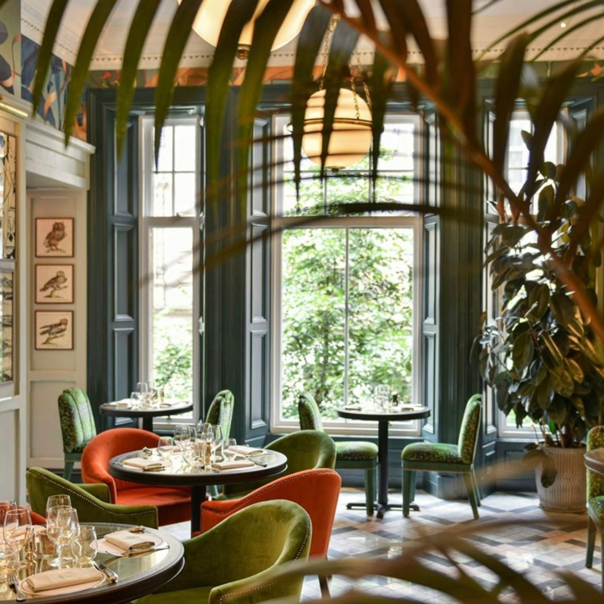 most_instagrammable_restaurants_in_glasgow_the_ivy