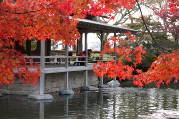 Autumn leaves viewing in Nishiyama Park, Sabae