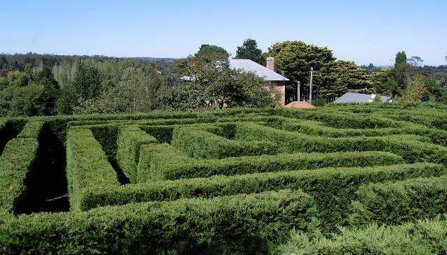 Harpers Mansion Maze Berrima