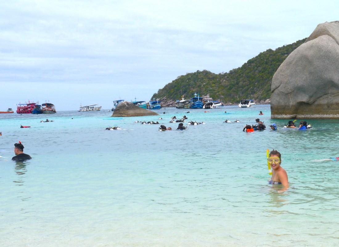 Koh Nang Yuan, Snorkeling