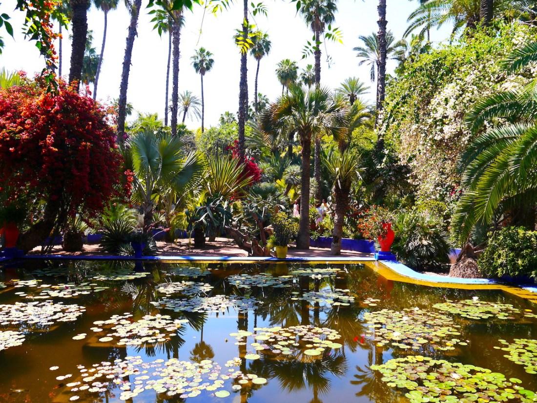 Jardin Majorelle, Pond