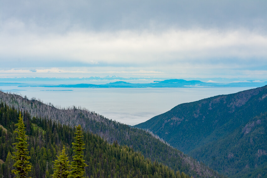 10 Reasons to Visit Olympic National Park Canada