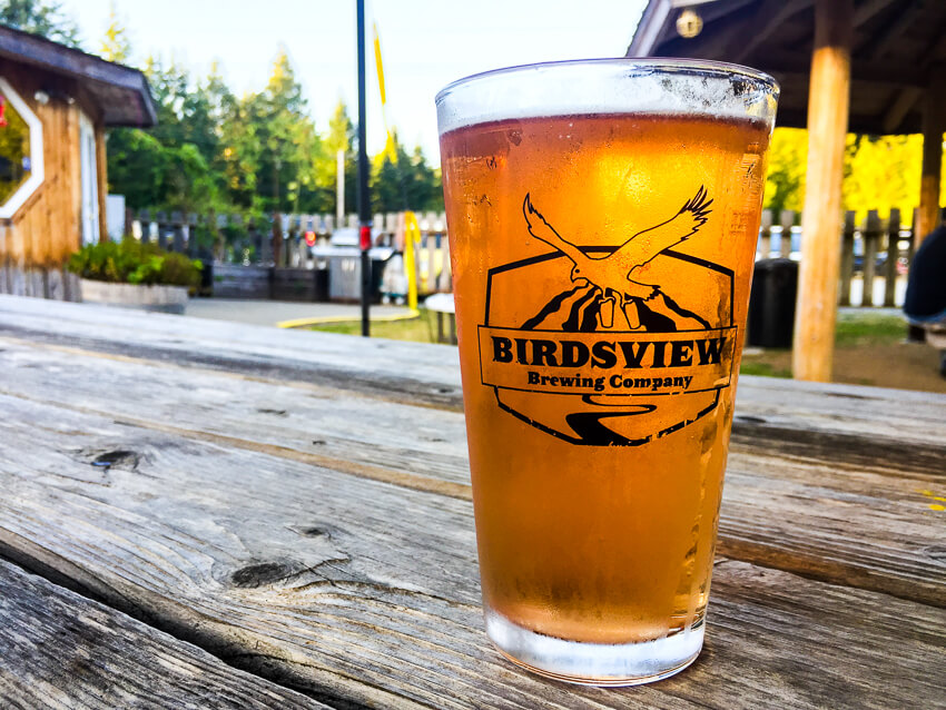 How to Spend a Weekend in Winthrop birds view brewing