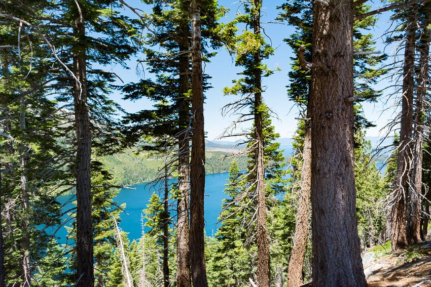 summer lake angora ridge