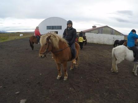 Horse riding in Myvatn