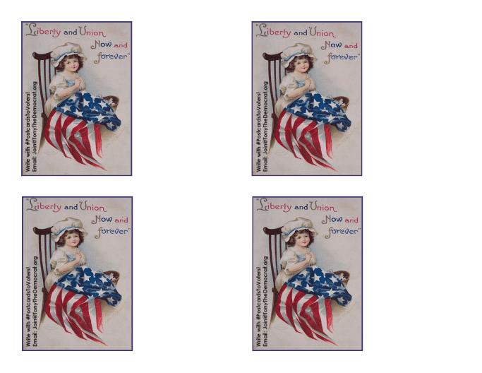 Vintage Girl Flag