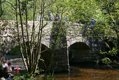 Fingle Bridge, Devon
