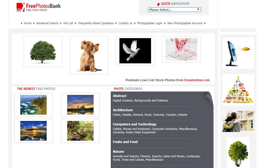 5-Free-Photos-Bank