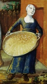 The woman is wearing a cote - it looks to have a high waist line and a square neck line as well as tight sleeves. She is wearing a very tight cap. Peasant woman with a basket - working on trashing grain. 1490