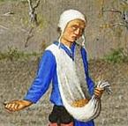 Coif 1412