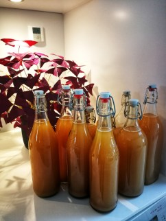 First try at bottling the stuff. The glass bottles are very likely to shatter and that is a mess!