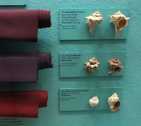 Different purple hues obtained from three types of sea snails
