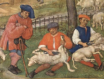 Sheep shearers wear short tunics over shirts, with hose and ankle-high shoes, Flanders, c. 1510.