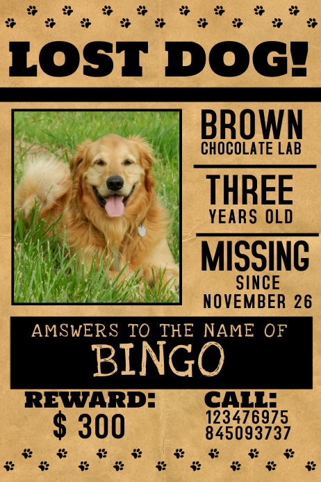 lost dog flyer example