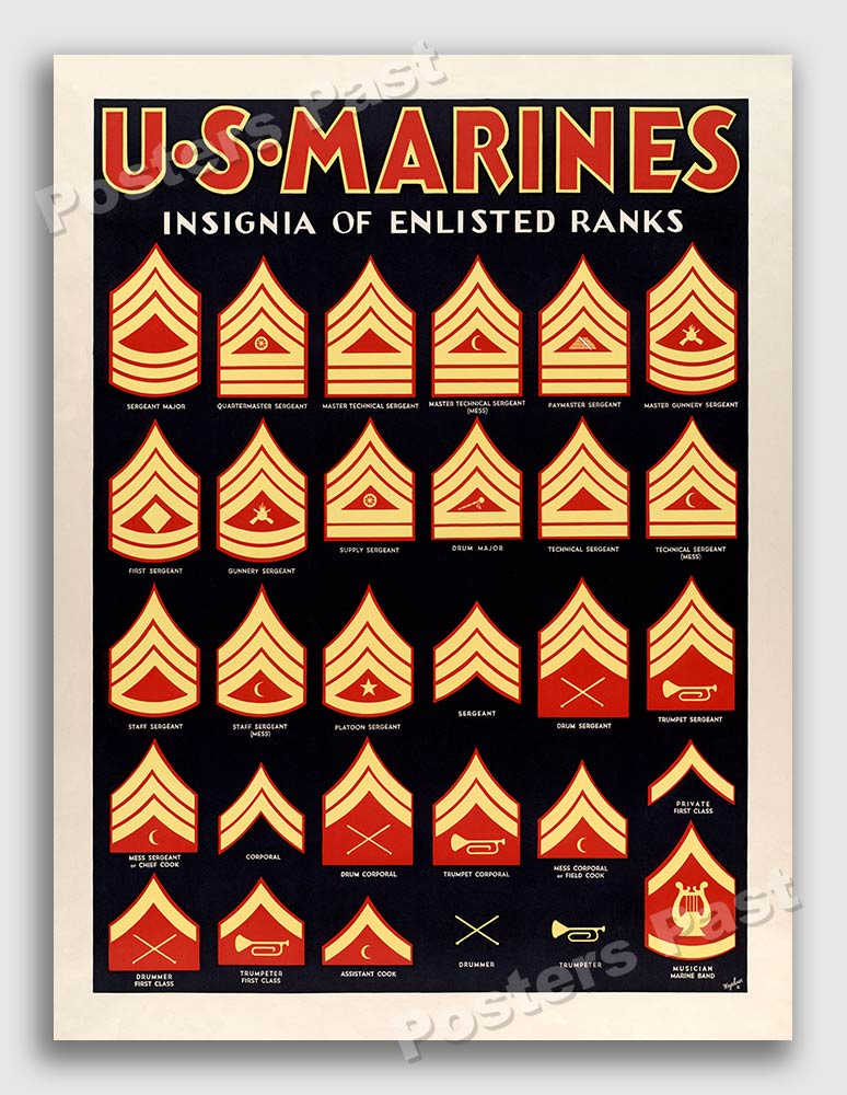 S Insignia Of Enlisted Ranks Wwii Marine Corps War