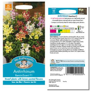 Mr. Fothergill's Seeds - Antirrhinum ReminiScent F1