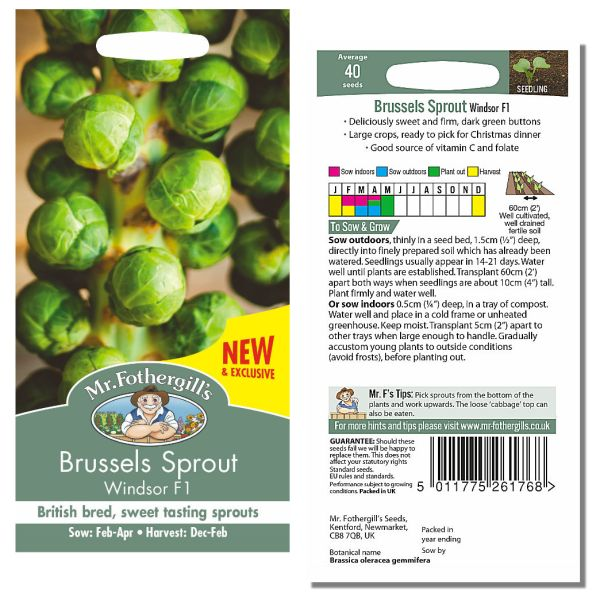 Mr. Fothergill's Seeds - Brussels Sprout Windsor F1