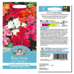 Mr. Fothergill's Seeds - Busy Lizzie - Mr F's Mixed F1