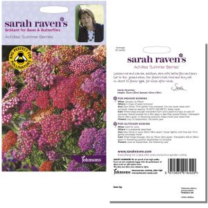 Sarah Raven's Achillea 'Summer Berries' Seeds by Johnsons