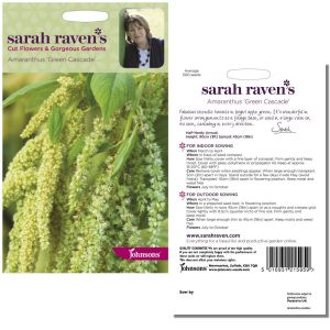 Sarah Raven's Amaranthus Green Cascade Seeds by Johnsons