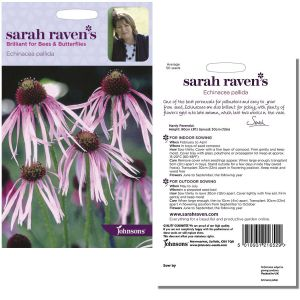 Sarah Raven's Echinacea pallida Seeds by Johnsons