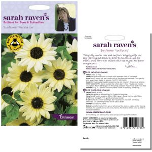 Sarah Raven's Sunflower 'Vanilla Ice' Seeds by Johnsons