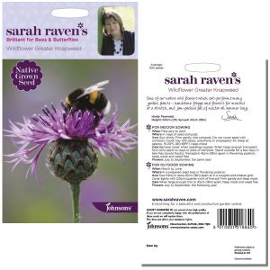 Sarah Raven's Wildflower Greater Knapweed Seeds by Johnsons