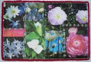 Sue Andrus, Spring