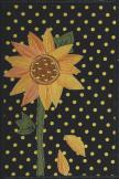Alexis Gardner, Sunflower4