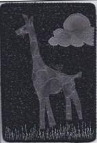 Lauren, Giraffe