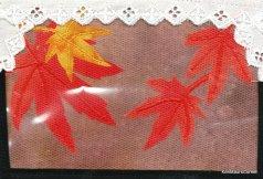 Maureen Curlewis, R23, Autumn (4)