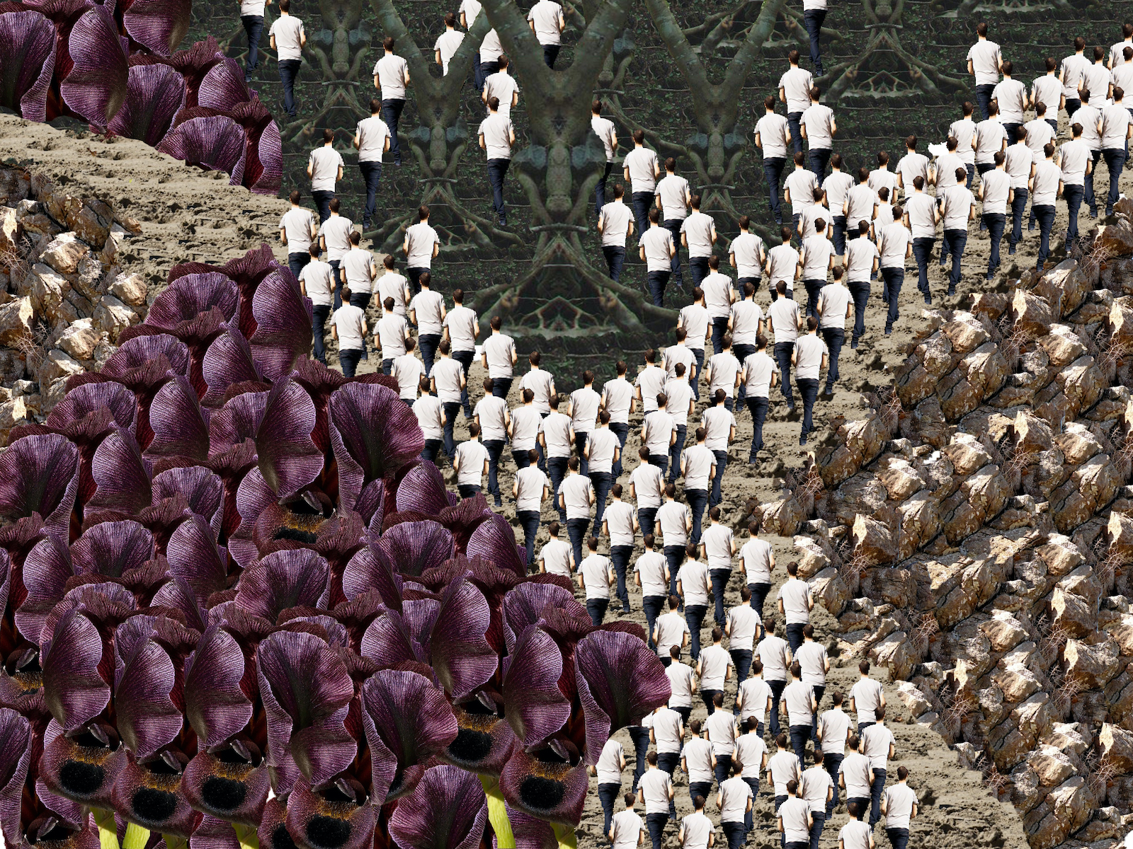 A background split into three with the repeating image of a man in a white shirt walking. On the left is background made of purple flowers, on the top is a background made of trees, on the right is a background made of rocks.