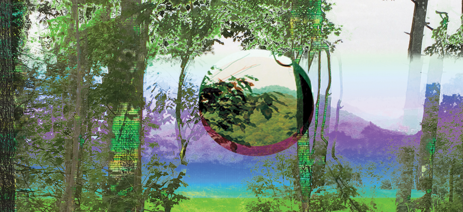 A digital landscape of colorful trees with a transparent sphere in the center.