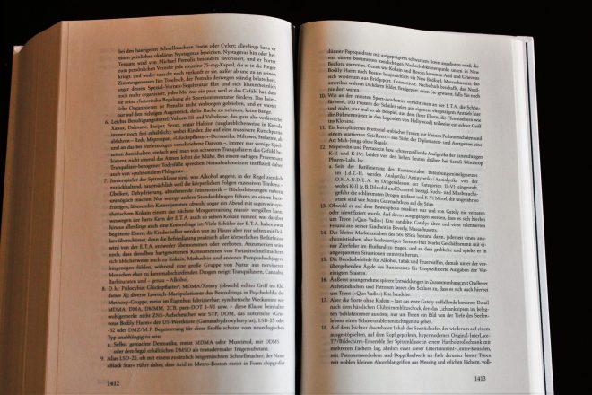 Auswahlseite David Foster Wallce: Infinite Jest